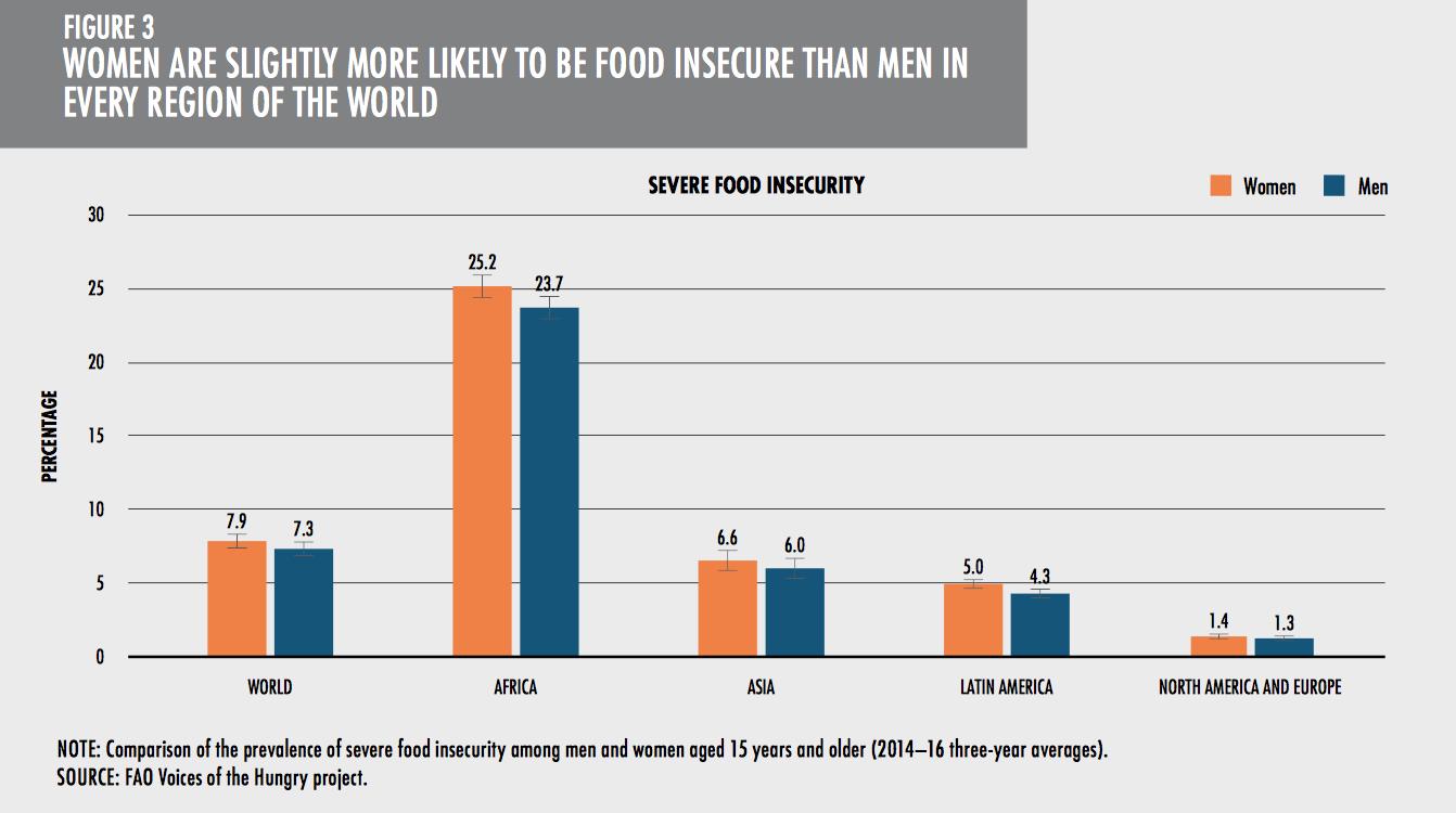 world hunger report